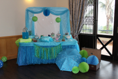 accessories-candy-sweets-baby-showere