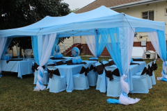 theme-adult-setting-baby-shower-boy-d
