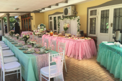 theme-bridal-shower-1d