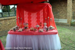 theme-bridal-shower-7