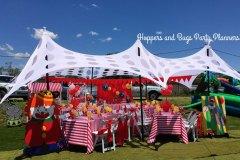theme-carnaval-20h