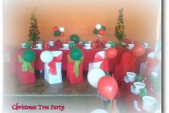 theme-christmas-11