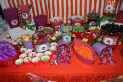 accessories-candy-sweet-buffet-dora2