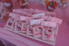 theme-hello-kitty-202