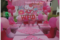 theme-hello-kitty-44