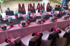 minnie-mouse-pink-and-black