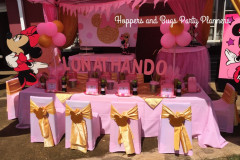 minnie-mouse-pink-and-gold