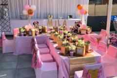 theme-minnie-pink-gold-4a