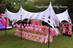 theme-minnie-pink-gold