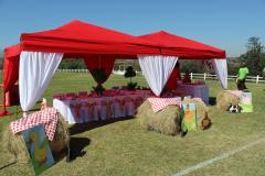 theme-farmyard5