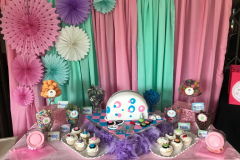accessories-candy-sweet-buffet-pamper-4a-