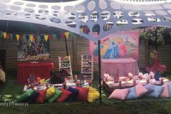 Theme-princess-super-heros-picnic1