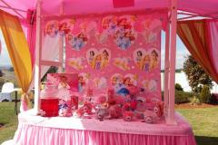 accessories-candy-sweet-buffet-princess-25