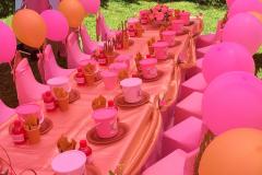 theme-princess-pink-and-gold-3