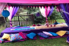 theme-shimmer-and-shine-picnic-1