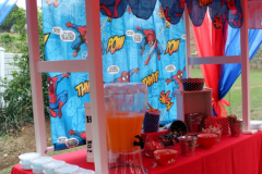 accessories-candy-sweet-buffet-spiderman1-